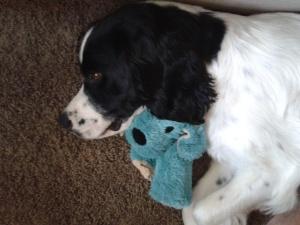 AJ with toy