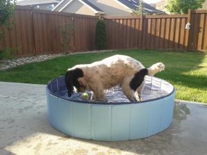 Splashing in the pool