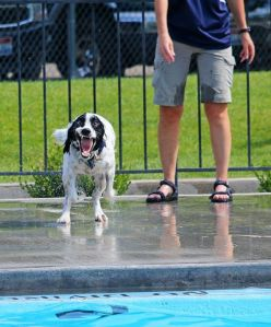Crazy AJ at the pool