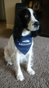 AJ the Seahawks fan
