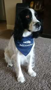 AJ the Seahawks fan