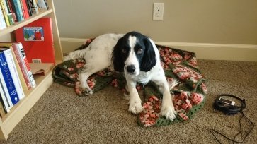 AJ on Grandma's blanket
