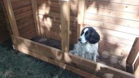 AJ in the planter box